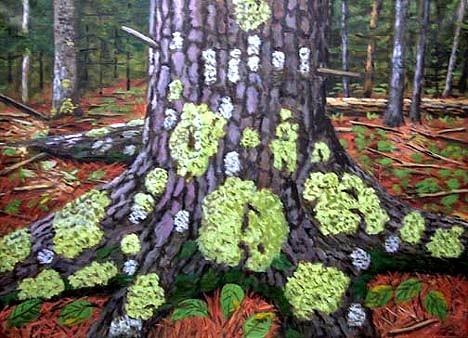 Burckhardt, Lichen Tree 2