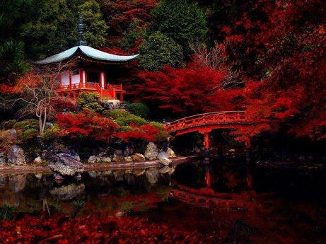 kyoto-japan-20913